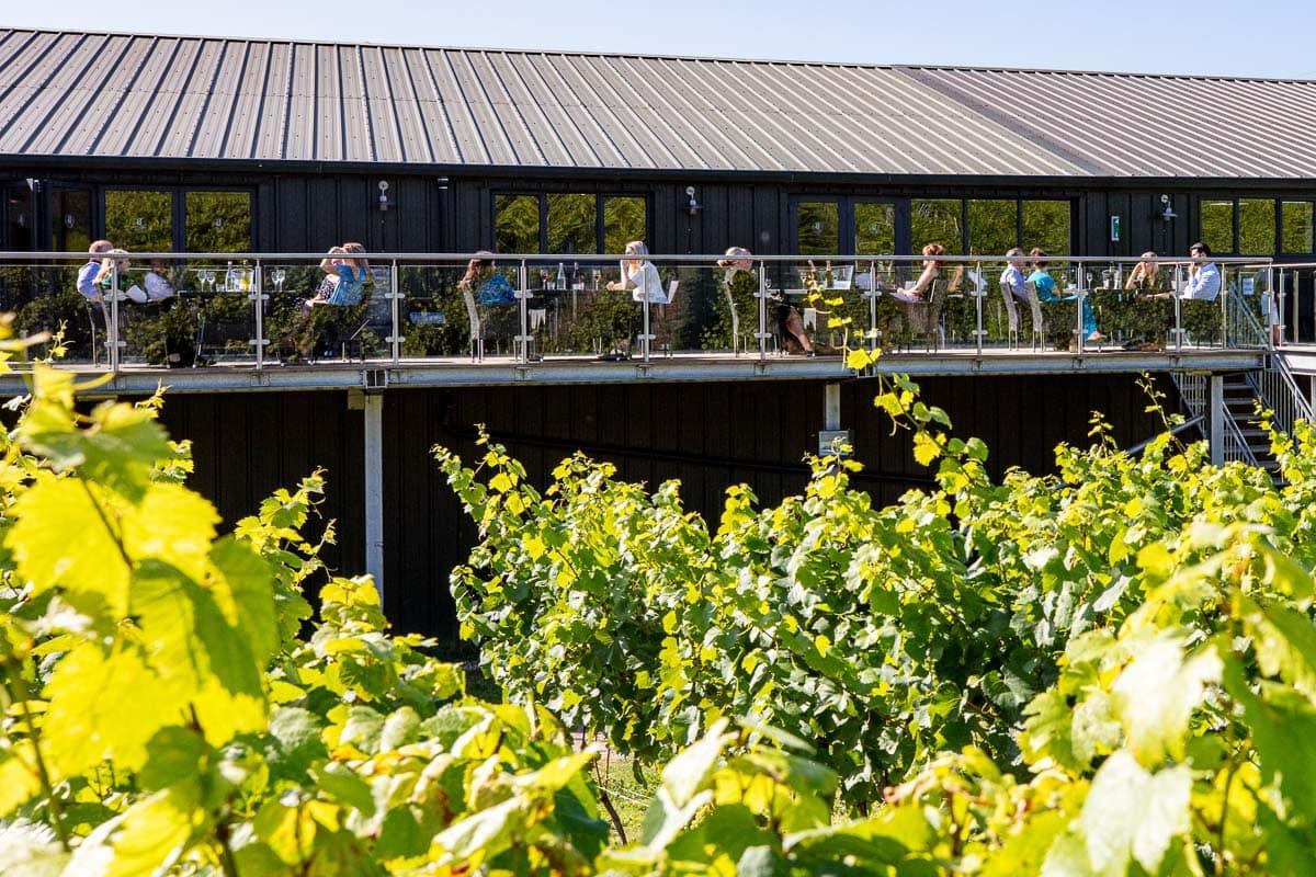 Bolney Wine Estate balcony overlooking the vines (Photo: Chris Orange)