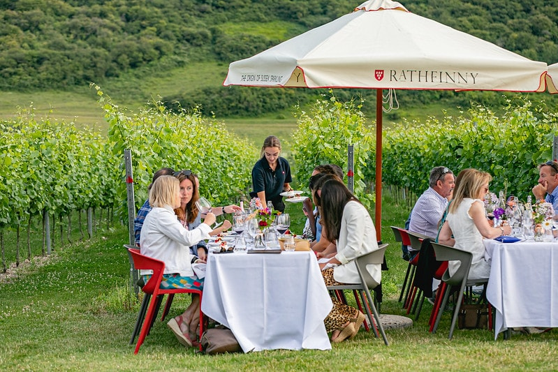 Wine tasting tour at Rathfinny Wine Estate