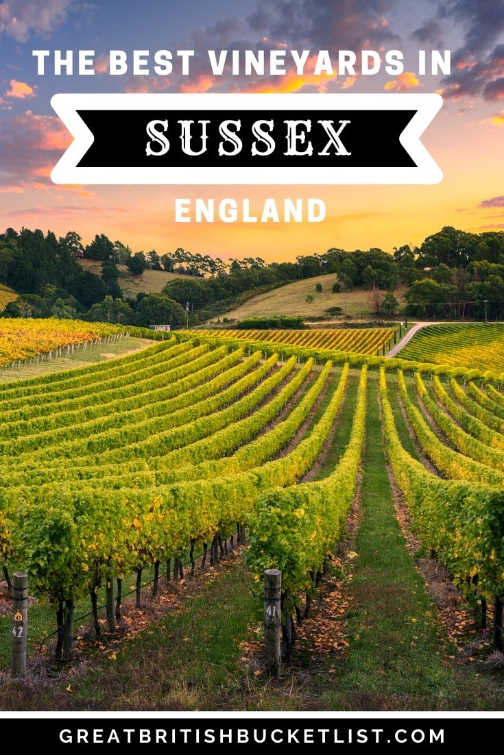 The Best Vineyards In Sussex