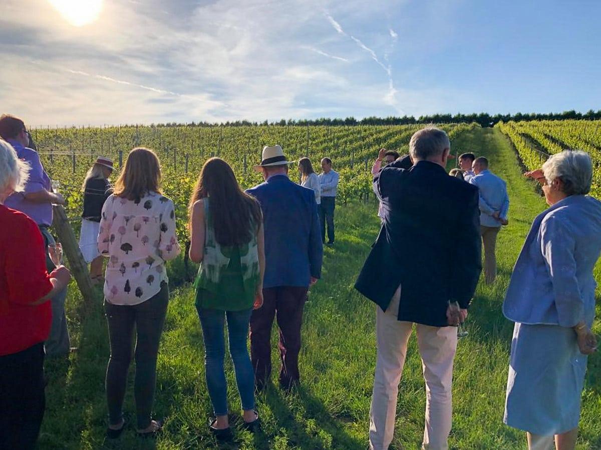 Wine tour at Wiston Estate, West Sussex