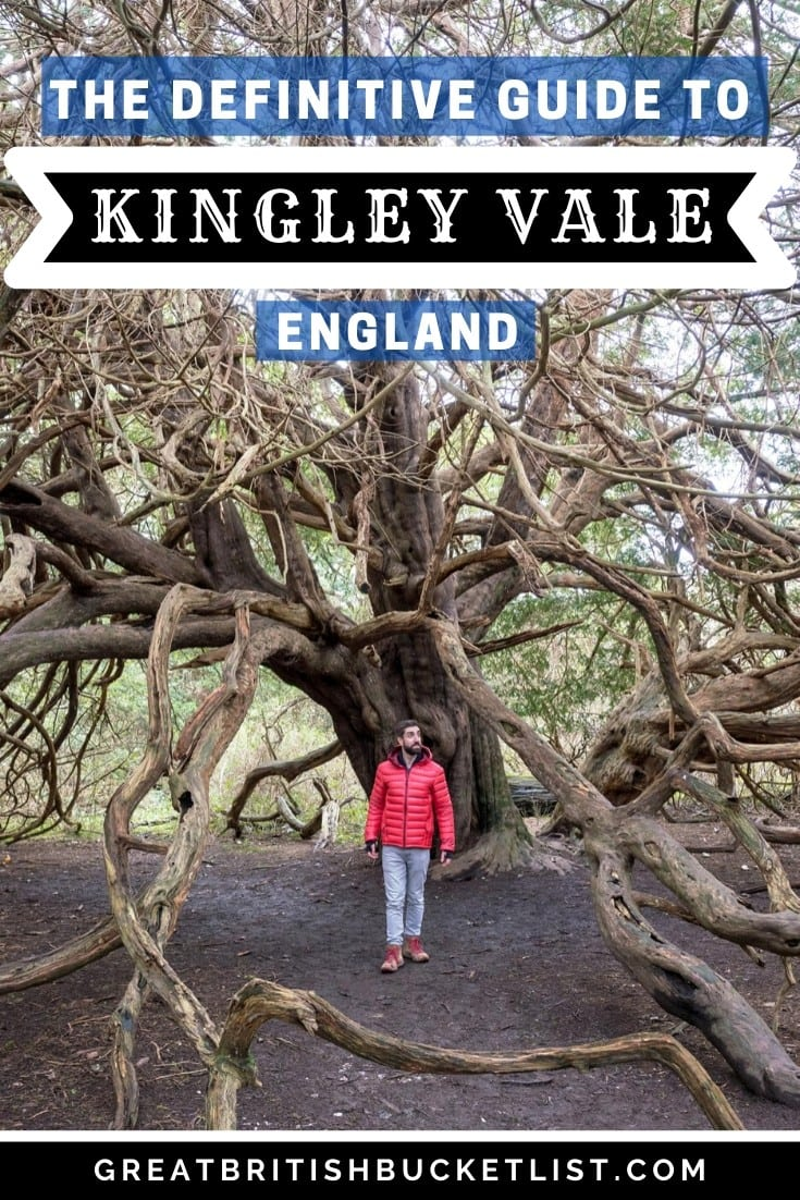 A Detailed Guide To The Kingley Vale Walk, England