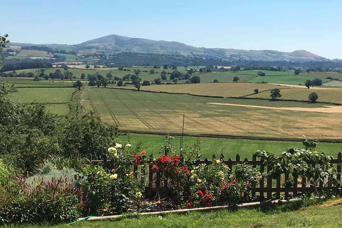 The View, Welshpool