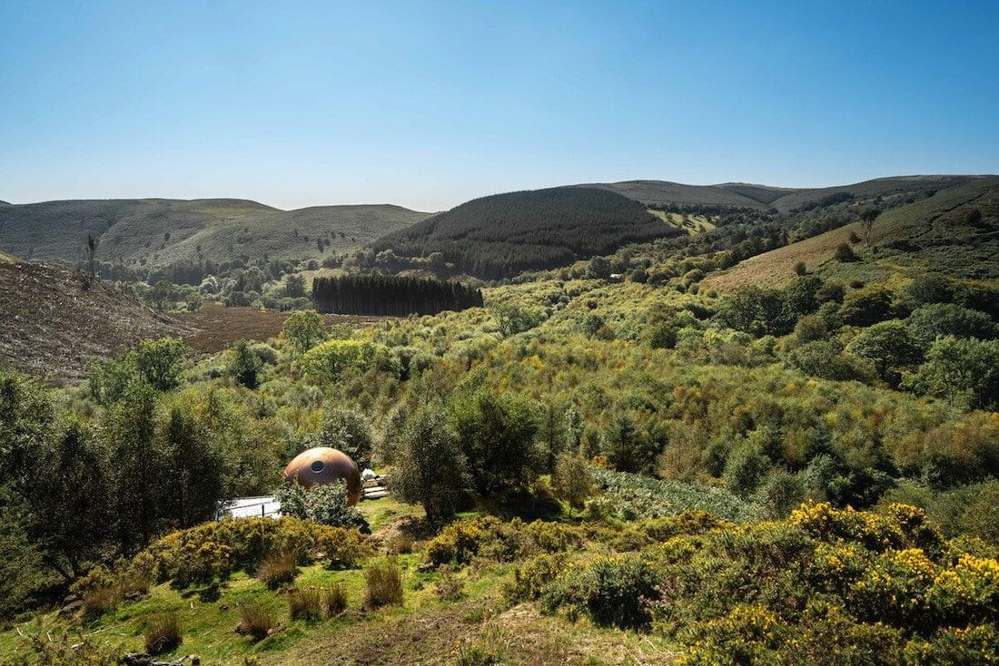Conker treepod in Wales