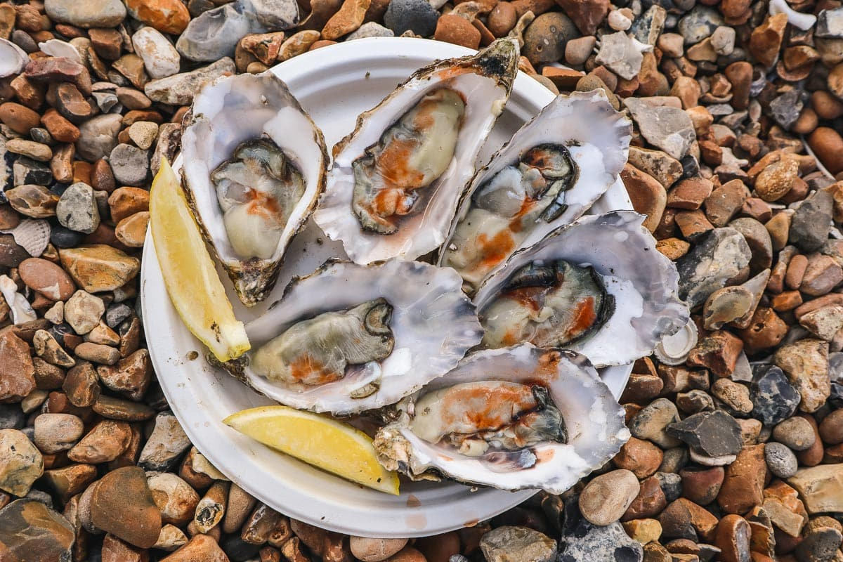 Plate of oysters in Whitstable