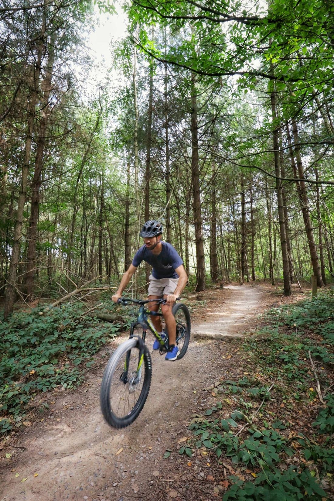 cycling at bedgebury pinetum