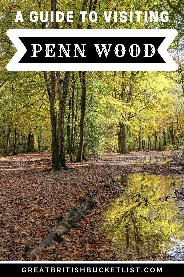 Guide To Visiting Penn Wood, Buckinghamshire