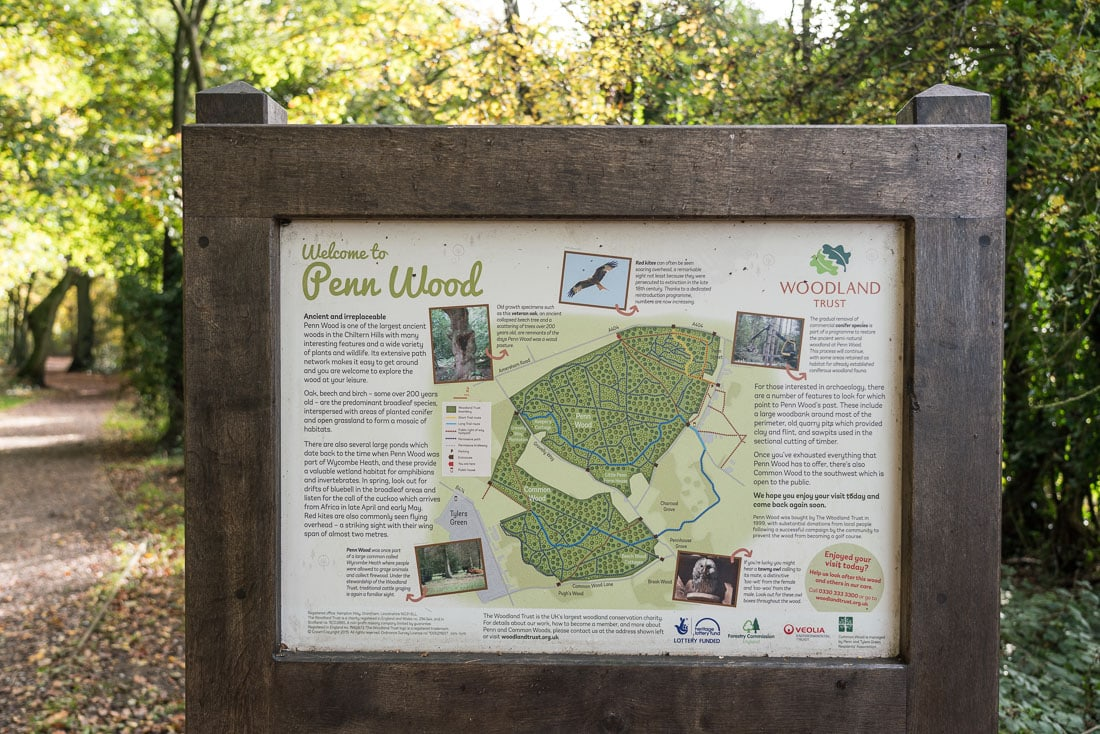 Penn Wood map