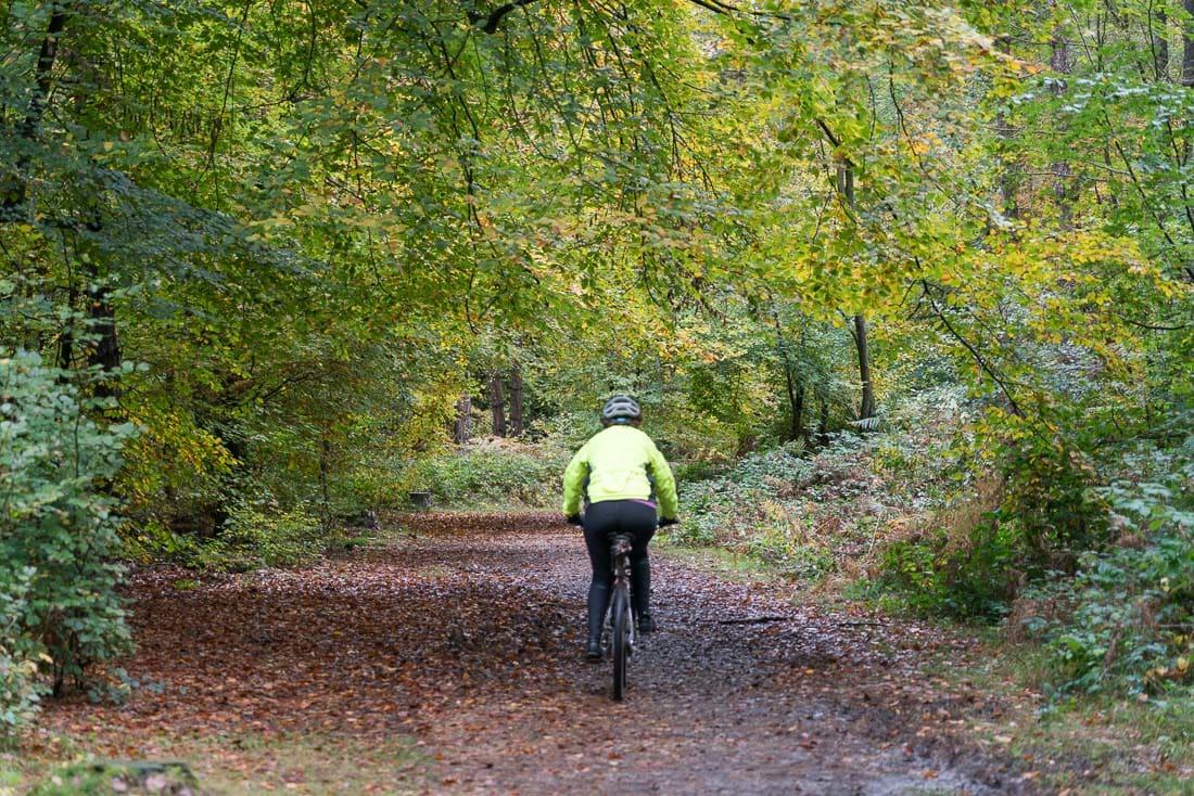 Cycling in Penn Wood