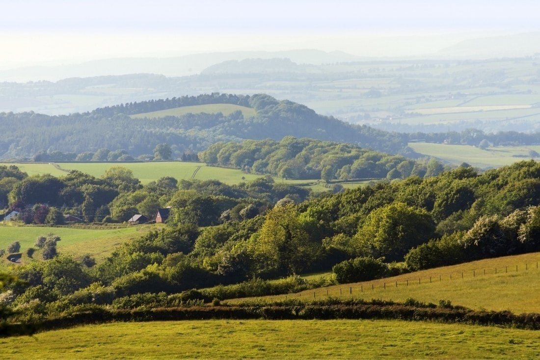 Rolling hills in the Forest of Dean