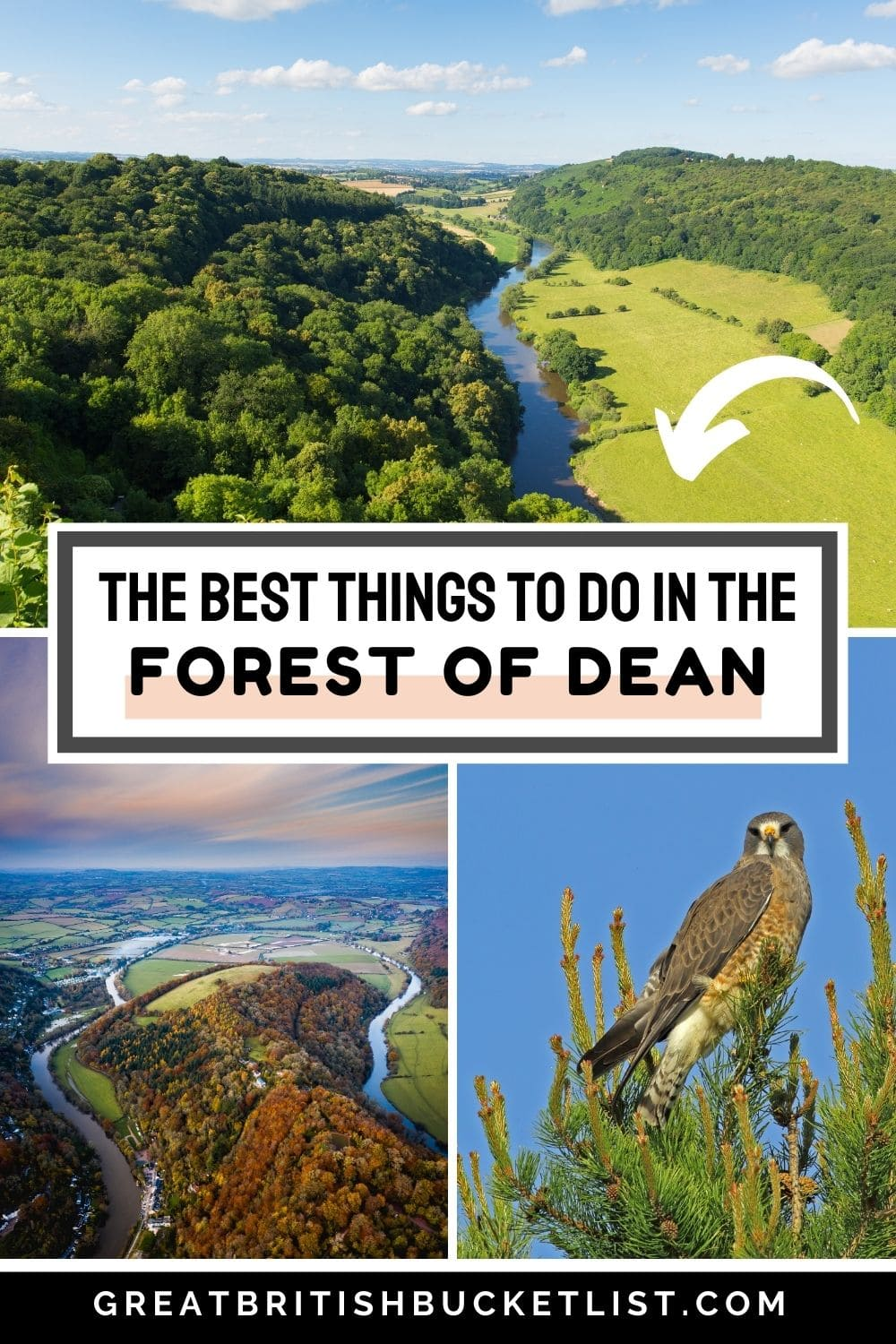 Things to do in the Forest of Dean