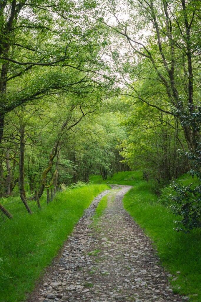 best walks in shropshire